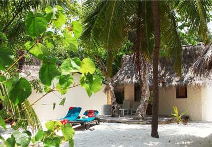 незабываемые впечатления в отеле Kuredu Island Resort 4